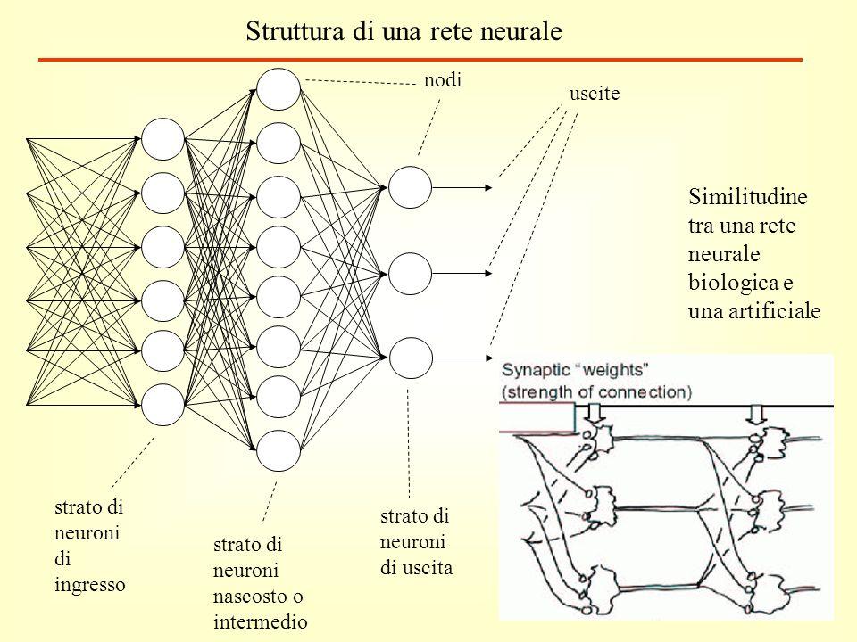 strato di neuroni di ingresso strato di neuroni nascosto o intermedio strato di neuroni di uscita uscite Similitudine tra una rete neurale biologica e una artificiale Struttura di una rete neurale nodi