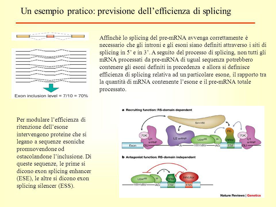 Un esempio pratico: previsione dellefficienza di splicing Affinchè lo splicing del pre-mRNA avvenga correttamente è necessario che gli introni e gli esoni siano definiti attraverso i siti di splicing in 5 e in 3.