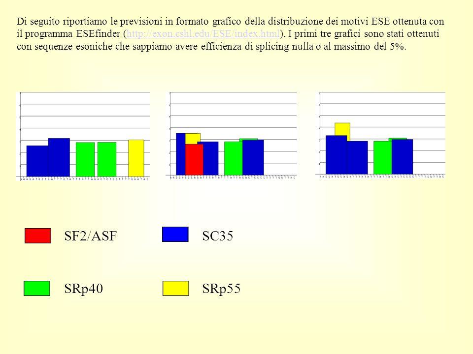 Di seguito riportiamo le previsioni in formato grafico della distribuzione dei motivi ESE ottenuta con il programma ESEfinder (http://exon.cshl.edu/ESE/index.html).