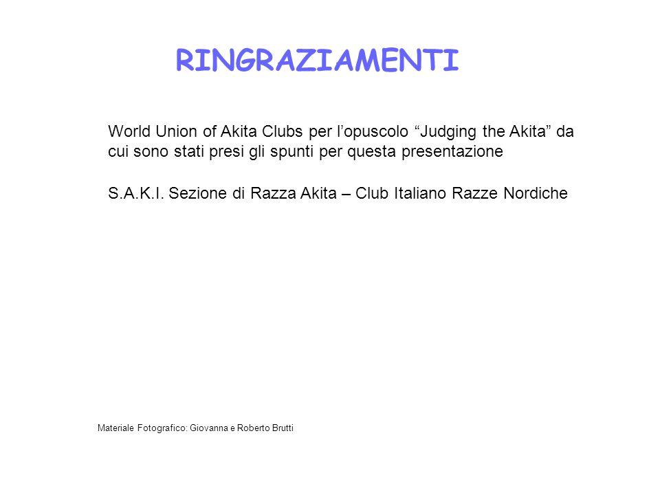 RINGRAZIAMENTI World Union of Akita Clubs per lopuscolo Judging the Akita da cui sono stati presi gli spunti per questa presentazione S.A.K.I. Sezione