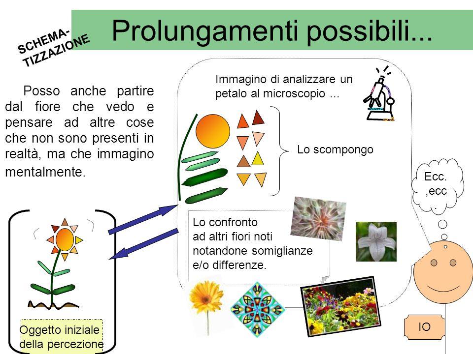 Prolungamenti possibili... SCHEMA- TIZZAZIONE Oggetto iniziale della percezione IO Posso anche partire dal fiore che vedo e pensare ad altre cose che
