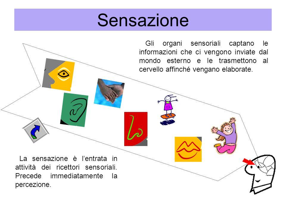 Sensazione Gli organi sensoriali captano le informazioni che ci vengono inviate dal mondo esterno e le trasmettono al cervello affinché vengano elabor