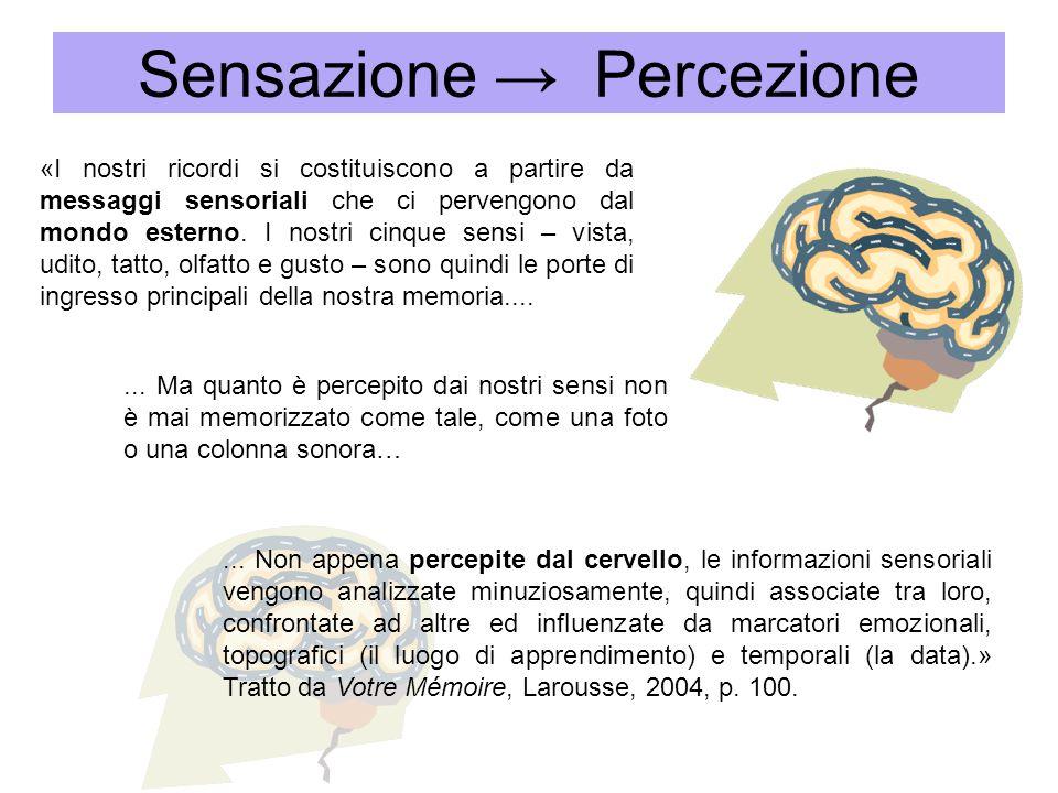 «I nostri ricordi si costituiscono a partire da messaggi sensoriali che ci pervengono dal mondo esterno. I nostri cinque sensi – vista, udito, tatto,