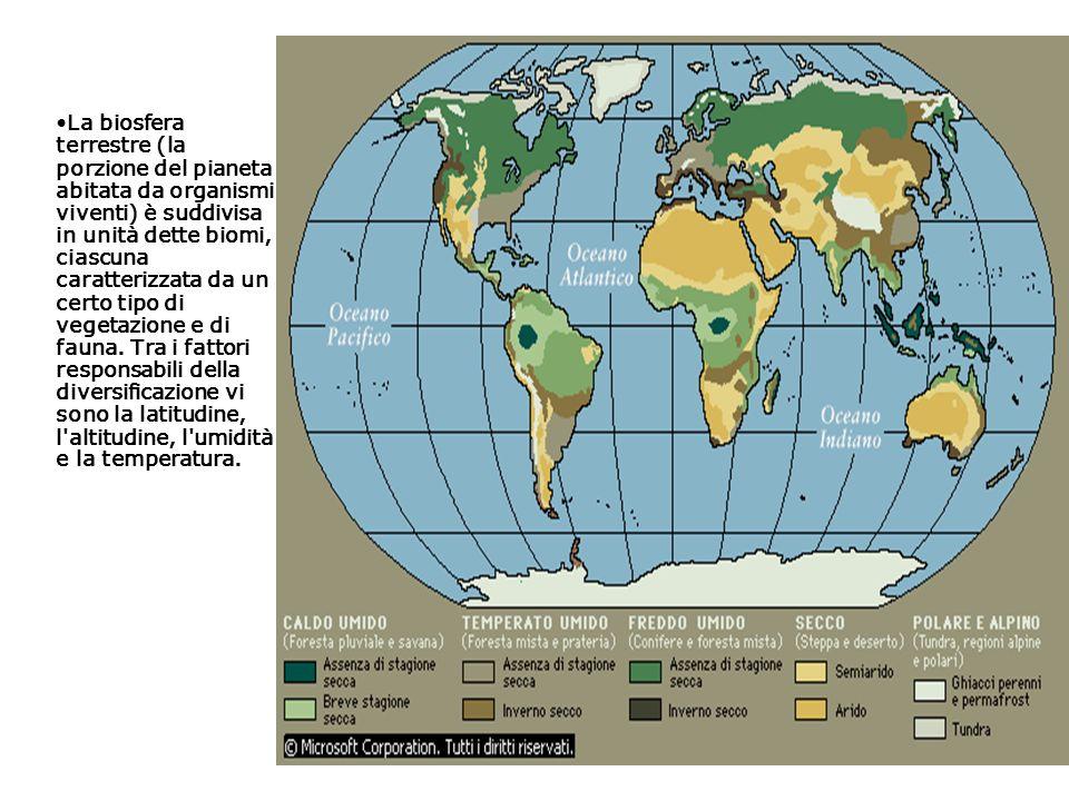 La biosfera terrestre (la porzione del pianeta abitata da organismi viventi) è suddivisa in unità dette biomi, ciascuna caratterizzata da un certo tip