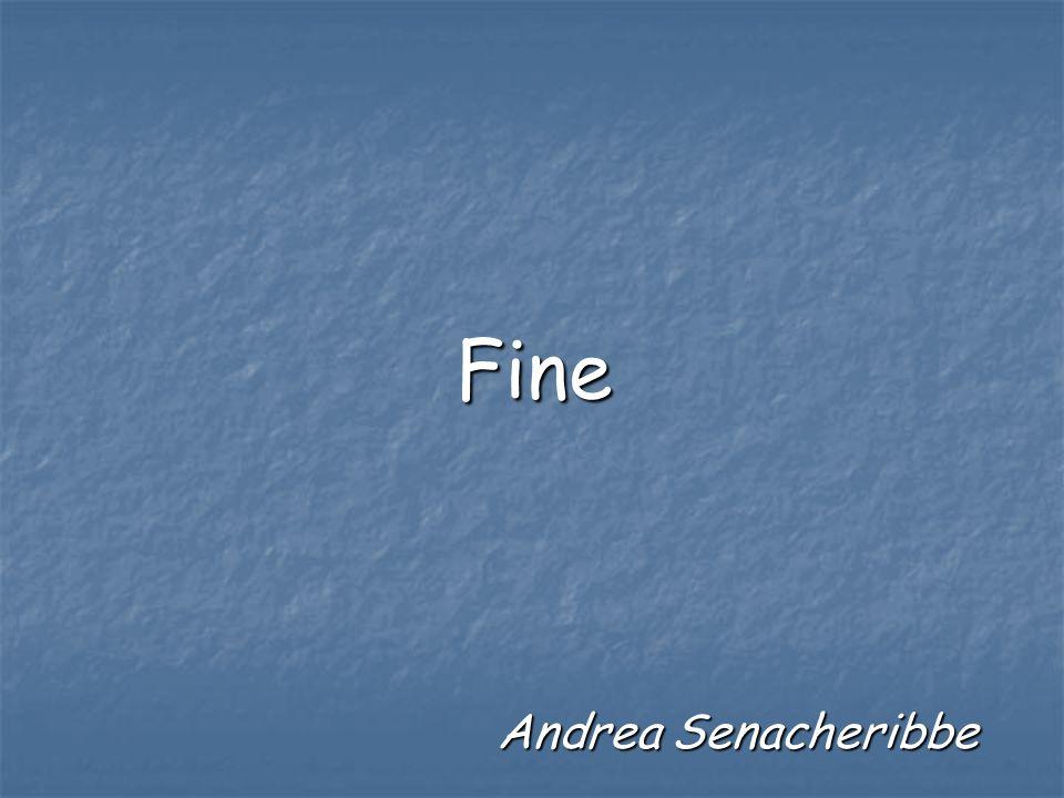 Fine Andrea Senacheribbe