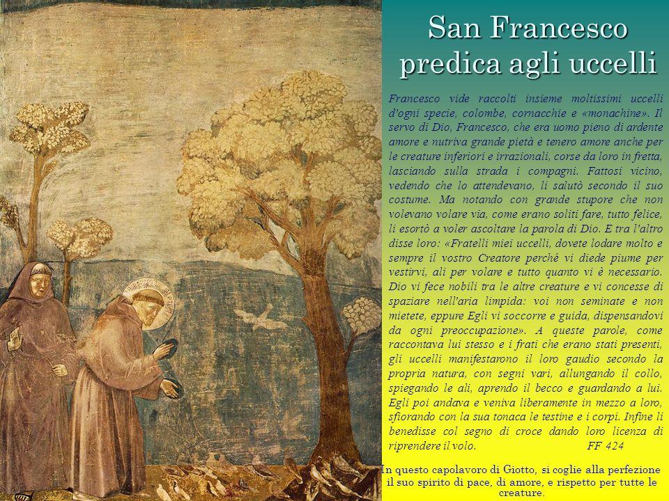 San Francesco predica agli uccelli In questo capolavoro di Giotto, si coglie alla perfezione il suo spirito di pace, di amore, e rispetto per tutte le