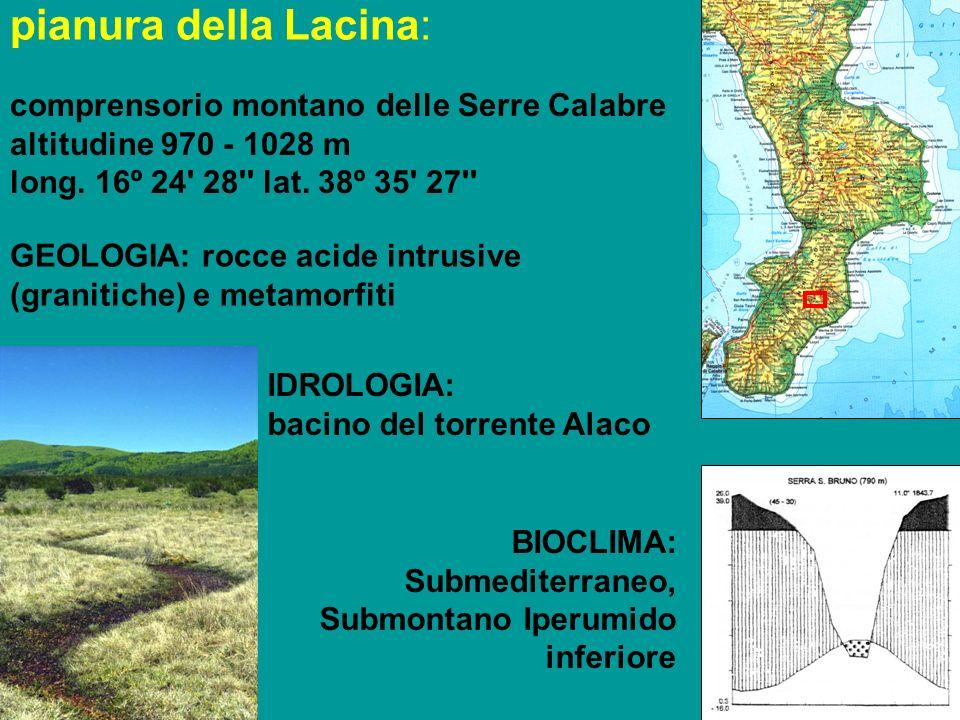pianura della Lacina: comprensorio montano delle Serre Calabre altitudine 970 - 1028 m long.