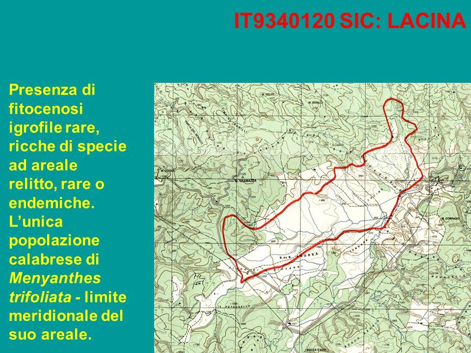 IT9340120 SIC: LACINA Presenza di fitocenosi igrofile rare, ricche di specie ad areale relitto, rare o endemiche.