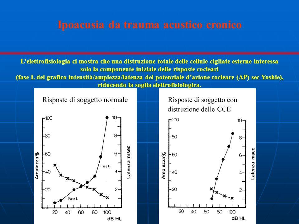 Lelettrofisiologia ci mostra che una distruzione totale delle cellule cigliate esterne interessa solo la componente iniziale delle risposte cocleari (