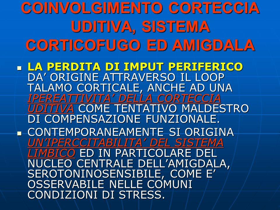 COINVOLGIMENTO CORTECCIA UDITIVA, SISTEMA CORTICOFUGO ED AMIGDALA LA PERDITA DI IMPUT PERIFERICO DA ORIGINE ATTRAVERSO IL LOOP TALAMO CORTICALE, ANCHE