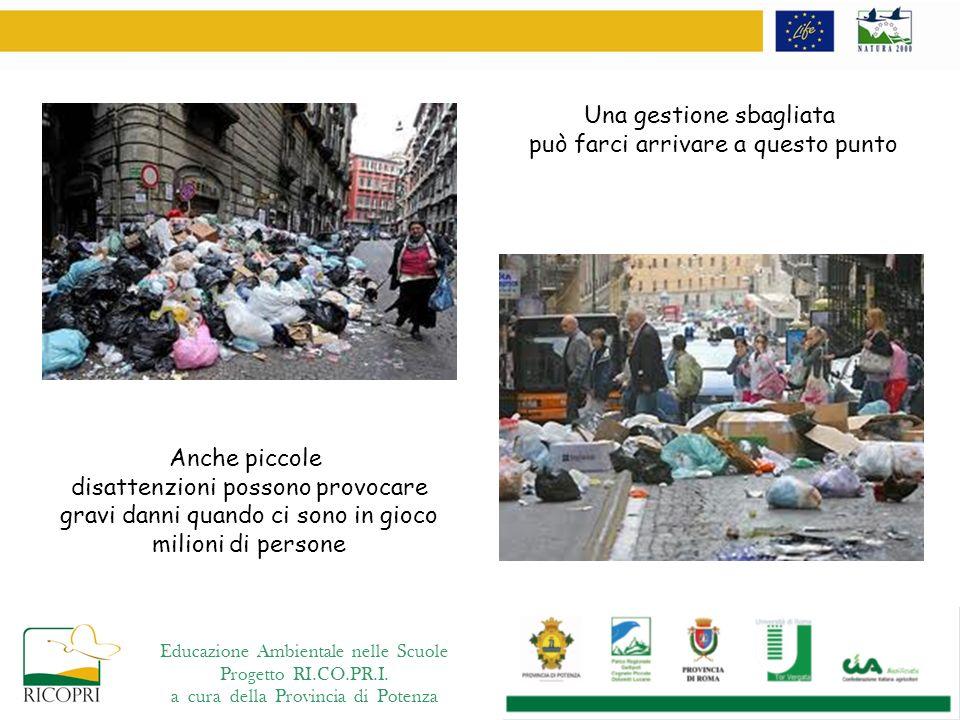 Educazione Ambientale nelle Scuole Progetto RI.CO.PR.I.