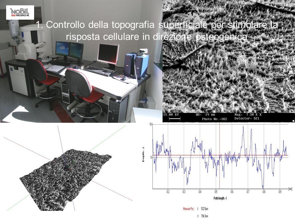1. Controllo della topografia superficiale per stimolare la risposta cellulare in direzione osteogenica