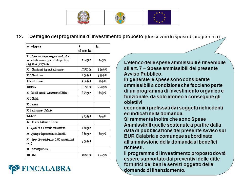 12. Dettaglio del programma di investimento proposto (descrivere le spese di programma): Lelenco delle spese ammissibili è rinvenibile allart. 7 – Spe