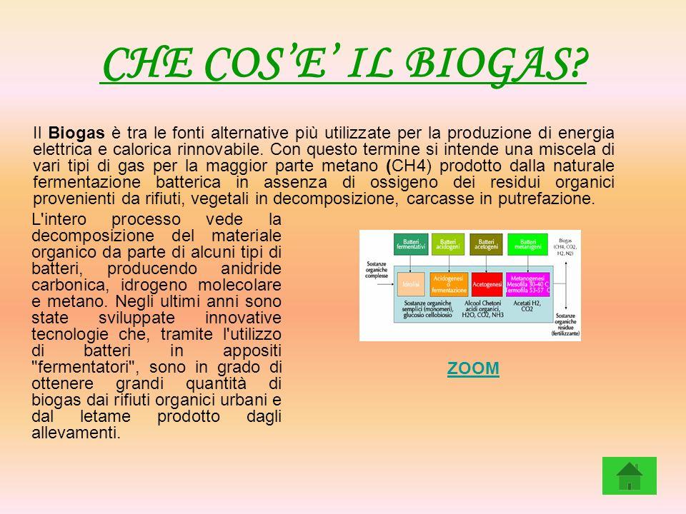 CHE COSE IL BIOGAS? Il Biogas è tra le fonti alternative più utilizzate per la produzione di energia elettrica e calorica rinnovabile. Con questo term