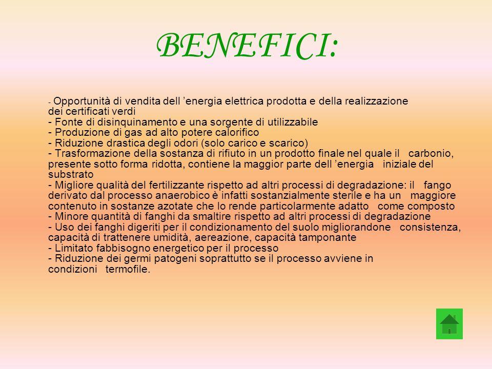BENEFICI: - Opportunità di vendita dell energia elettrica prodotta e della realizzazione dei certificati verdi - Fonte di disinquinamento e una sorgen