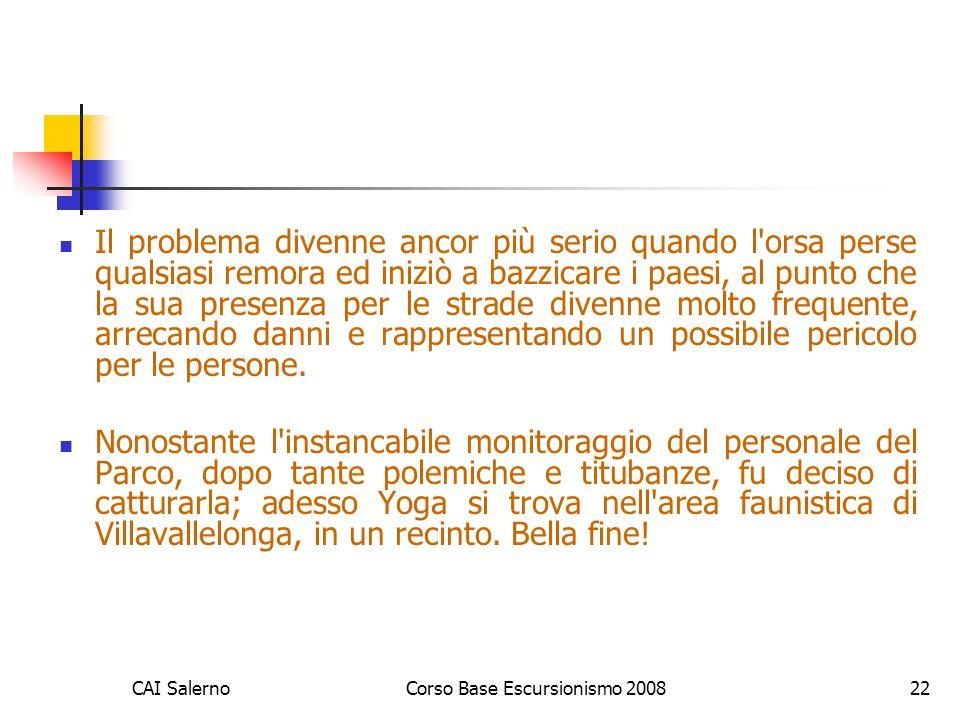 CAI SalernoCorso Base Escursionismo 200822 Il problema divenne ancor più serio quando l'orsa perse qualsiasi remora ed iniziò a bazzicare i paesi, al