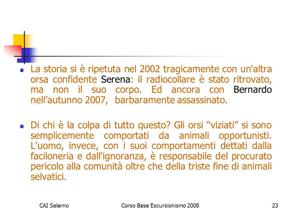CAI SalernoCorso Base Escursionismo 200823 La storia si è ripetuta nel 2002 tragicamente con un altra orsa confidente Serena: il radiocollare è stato ritrovato, ma non il suo corpo.