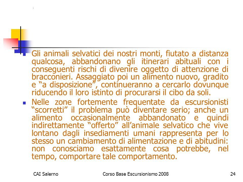 CAI SalernoCorso Base Escursionismo 200824. Gli animali selvatici dei nostri monti, fiutato a distanza qualcosa, abbandonano gli itinerari abituali co