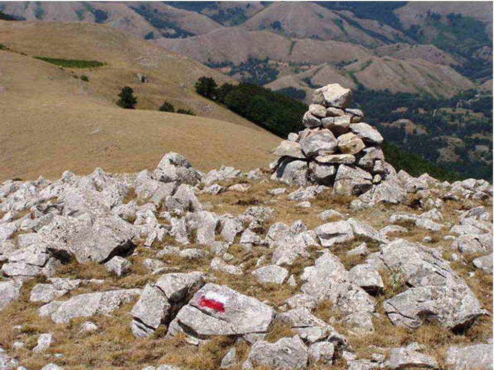 CAI SalernoCorso Base Escursionismo 200825 Dare volutamente da mangiare agli animali selvatici o anche soltanto lasciare dei resti è, quindi, sbagliato.
