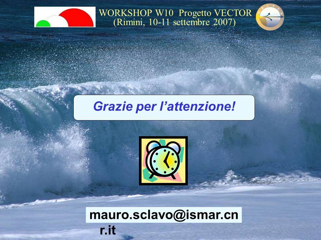 WORKSHOP W10 Progetto VECTOR (Rimini, 10-11 settembre 2007) mauro.sclavo@ismar.cn r.it Grazie per lattenzione!