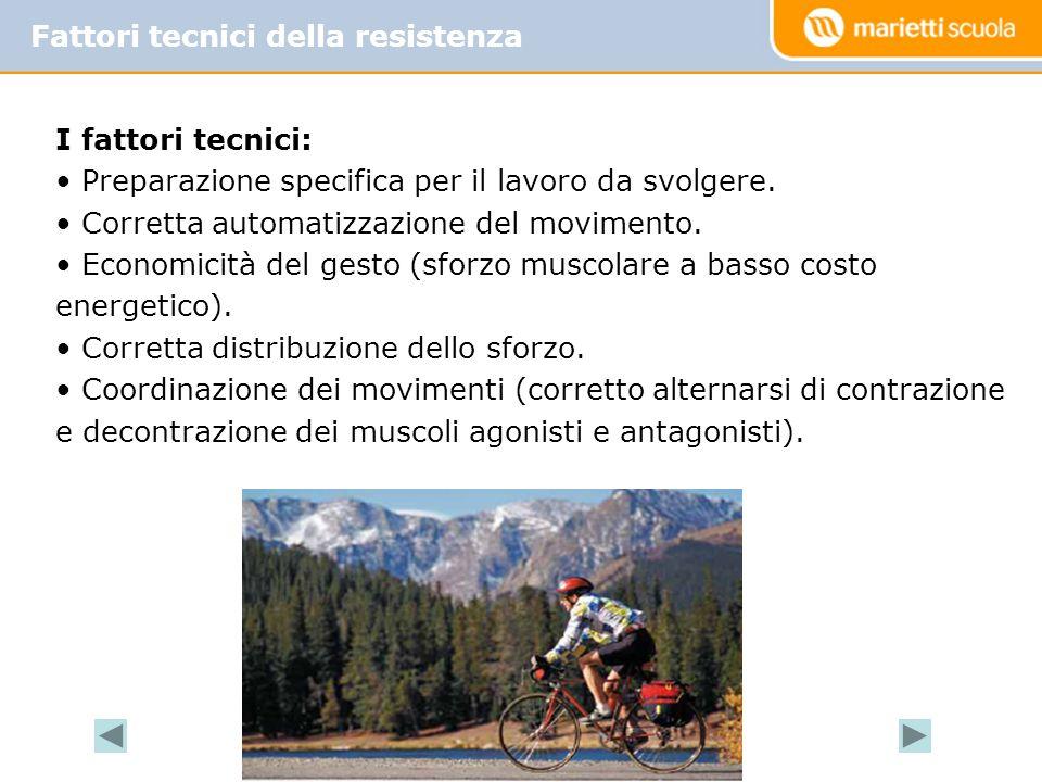 Fattori tecnici della resistenza I fattori tecnici: Preparazione specifica per il lavoro da svolgere.