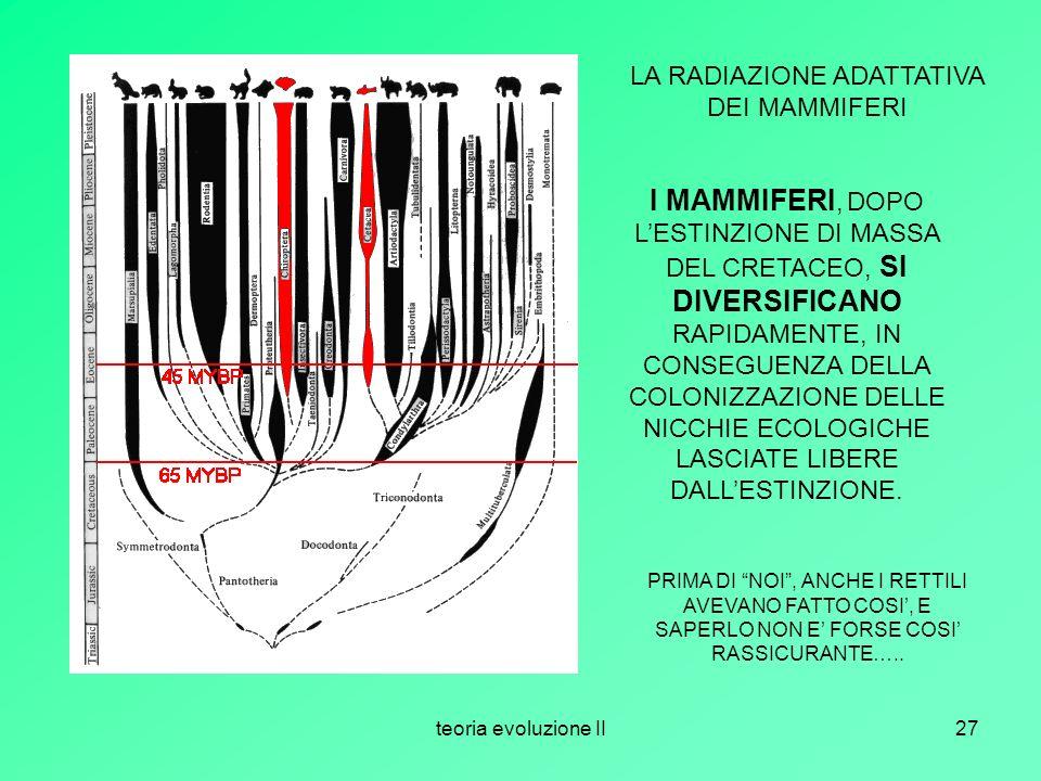 teoria evoluzione II27 LA RADIAZIONE ADATTATIVA DEI MAMMIFERI I MAMMIFERI, DOPO LESTINZIONE DI MASSA DEL CRETACEO, SI DIVERSIFICANO RAPIDAMENTE, IN CO