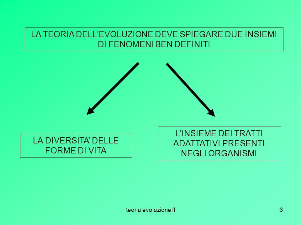 teoria evoluzione II3 LA TEORIA DELLEVOLUZIONE DEVE SPIEGARE DUE INSIEMI DI FENOMENI BEN DEFINITI LA DIVERSITA DELLE FORME DI VITA LINSIEME DEI TRATTI