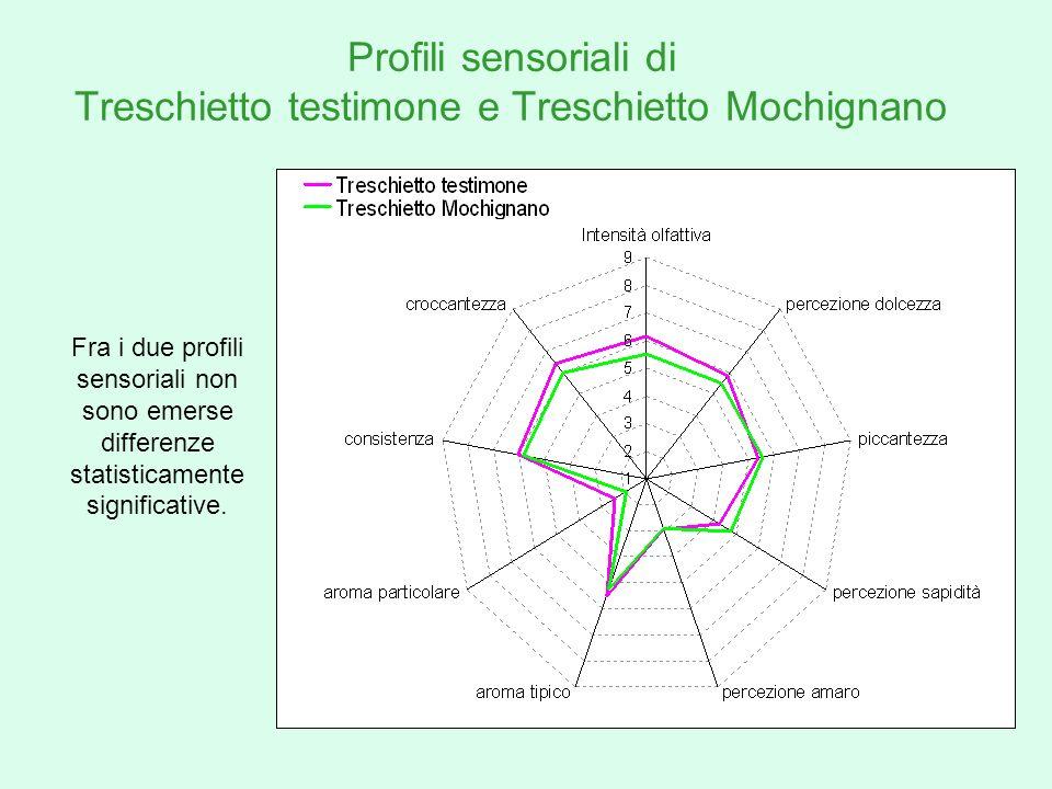 Profili sensoriali di Treschietto testimone e Treschietto Mochignano Fra i due profili sensoriali non sono emerse differenze statisticamente significa