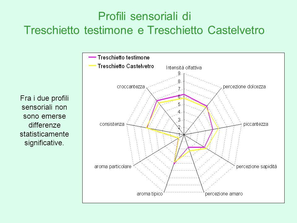 Profili sensoriali di Treschietto testimone e Treschietto Castelvetro Fra i due profili sensoriali non sono emerse differenze statisticamente signific