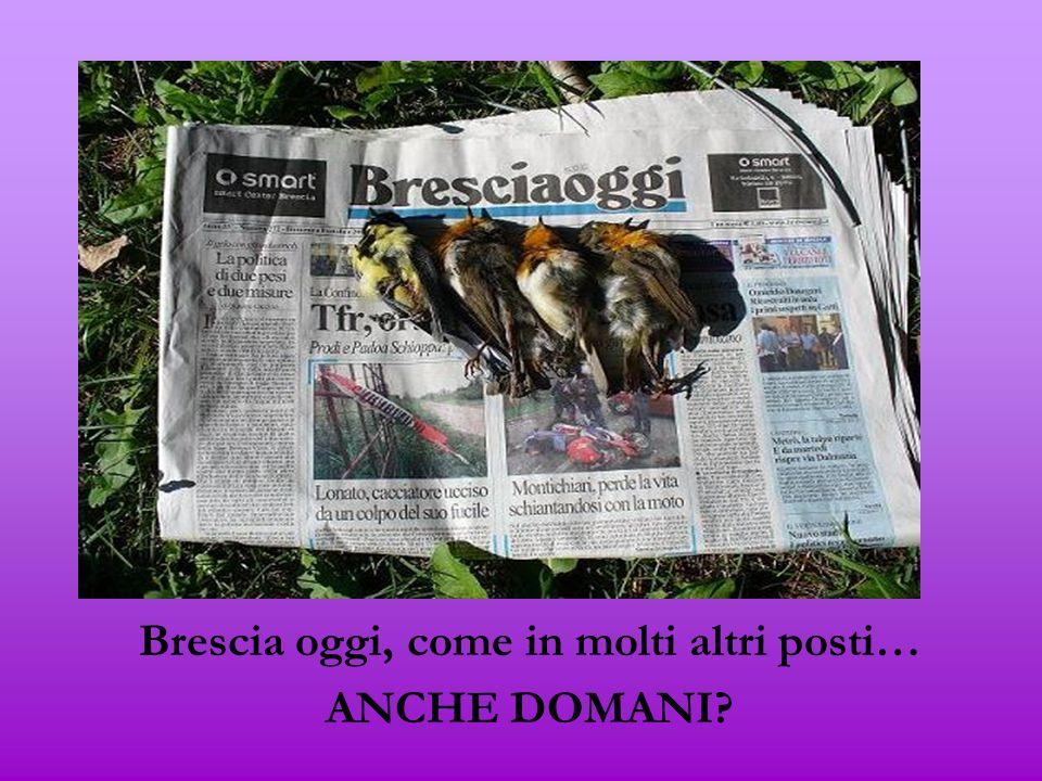 Brescia oggi, come in molti altri posti… ANCHE DOMANI?