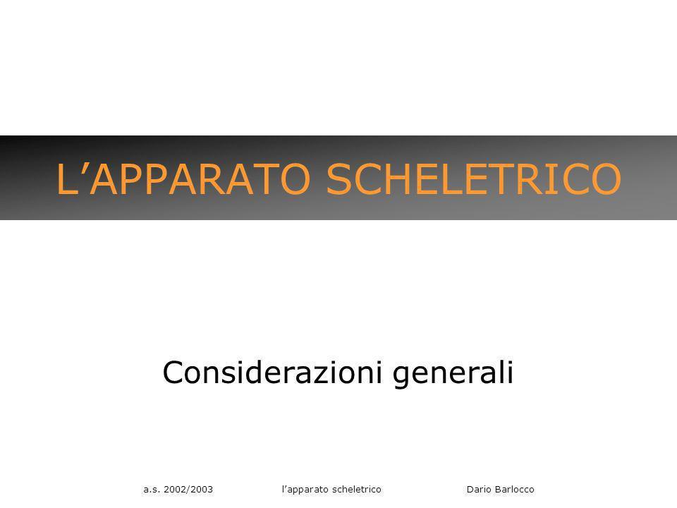 a.s. 2002/2003 lapparato scheletrico Dario Barlocco LAPPARATO SCHELETRICO Considerazioni generali