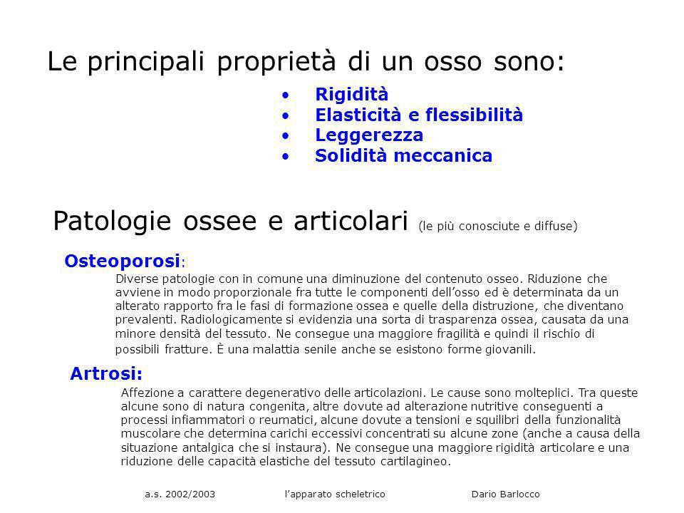 a.s. 2002/2003 lapparato scheletrico Dario Barlocco Le principali proprietà di un osso sono: Rigidità Elasticità e flessibilità Leggerezza Solidità me