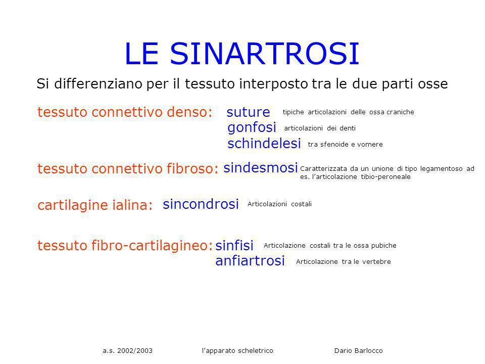 a.s. 2002/2003 lapparato scheletrico Dario Barlocco LE SINARTROSI Si differenziano per il tessuto interposto tra le due parti osse tessuto connettivo