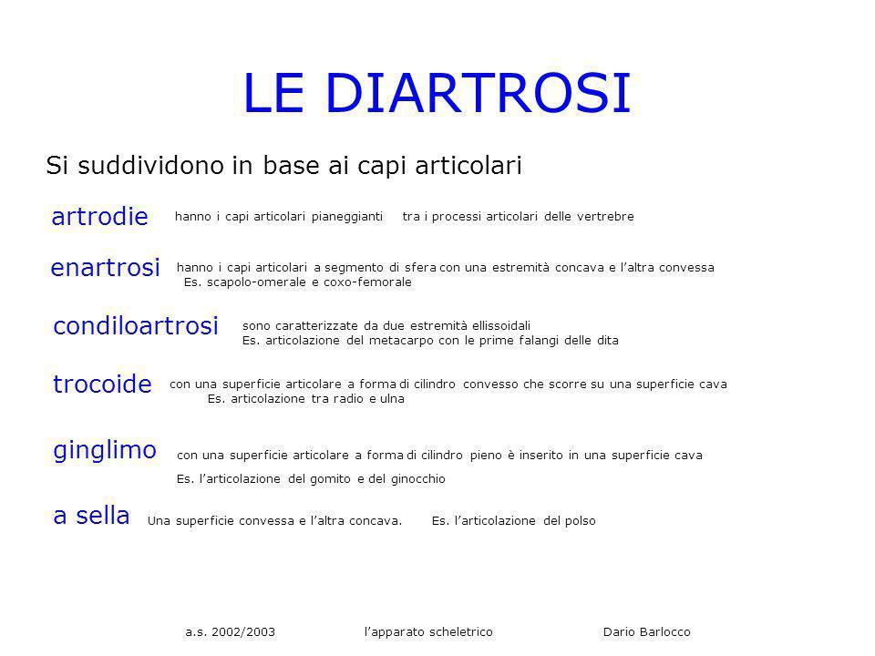a.s. 2002/2003 lapparato scheletrico Dario Barlocco LE DIARTROSI Si suddividono in base ai capi articolari artrodie hanno i capi articolari pianeggian