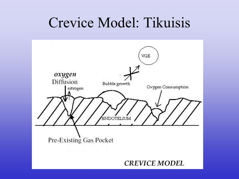 Crevice Model: Tikuisis