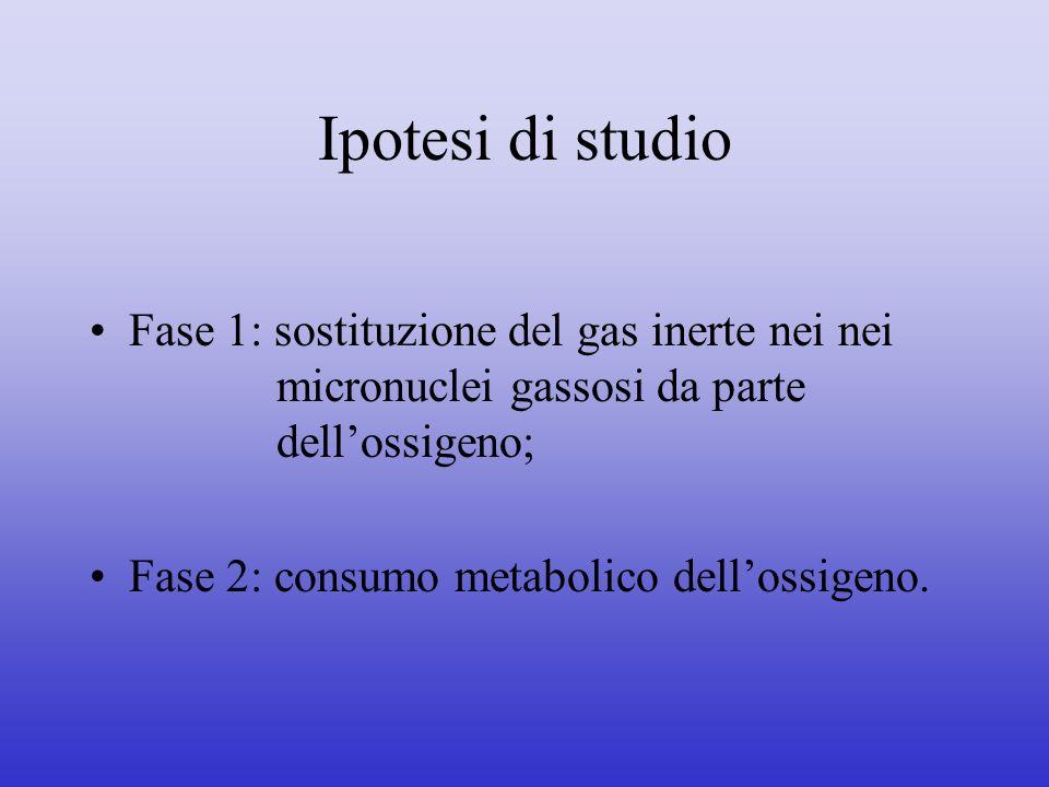 Ipotesi di studio Fase 1: sostituzione del gas inerte nei nei micronuclei gassosi da parte dellossigeno; Fase 2: consumo metabolico dellossigeno.