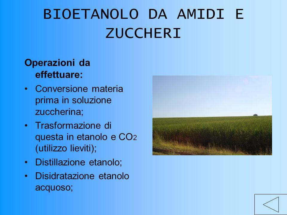 BIOETANOLO DA AMIDI E ZUCCHERI Operazioni da effettuare: Conversione materia prima in soluzione zuccherina; Trasformazione di questa in etanolo e CO 2 (utilizzo lieviti); Distillazione etanolo; Disidratazione etanolo acquoso;