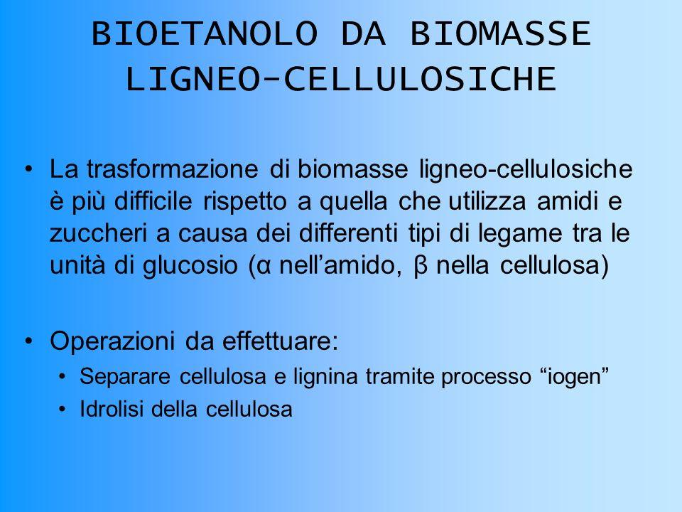 BIOETANOLO DA BIOMASSE LIGNEO-CELLULOSICHE La trasformazione di biomasse ligneo-cellulosiche è più difficile rispetto a quella che utilizza amidi e zuccheri a causa dei differenti tipi di legame tra le unità di glucosio (α nellamido, β nella cellulosa) Operazioni da effettuare: Separare cellulosa e lignina tramite processo iogen Idrolisi della cellulosa