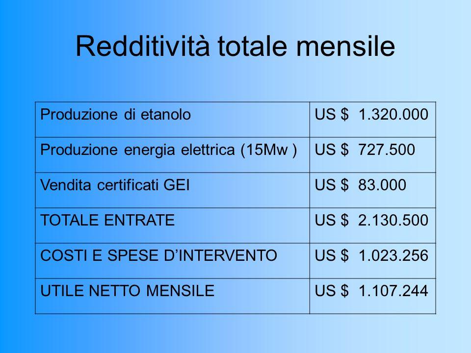 Redditività totale mensile Produzione di etanoloUS $ 1.320.000 Produzione energia elettrica (15Mw )US $ 727.500 Vendita certificati GEIUS $ 83.000 TOTALE ENTRATEUS $ 2.130.500 COSTI E SPESE DINTERVENTOUS $ 1.023.256 UTILE NETTO MENSILEUS $ 1.107.244