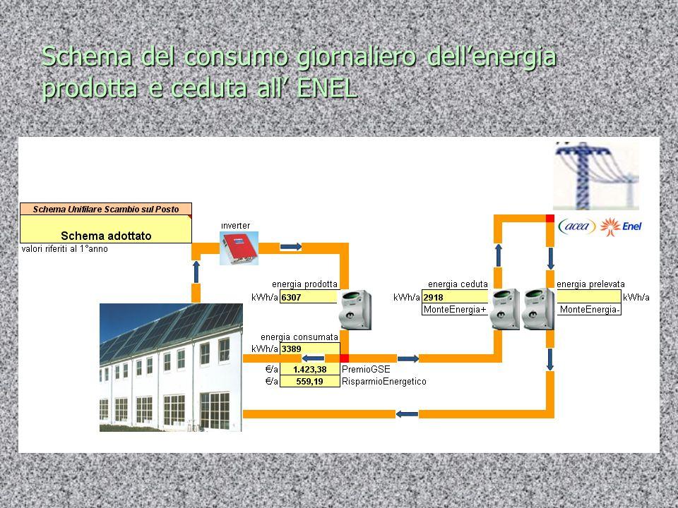Schema del consumo giornaliero dellenergia prodotta e ceduta all ENEL