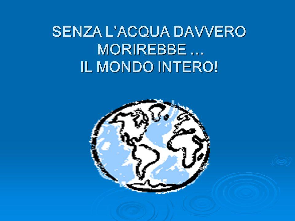 SENZA LACQUA DAVVERO MORIREBBE … IL MONDO INTERO!