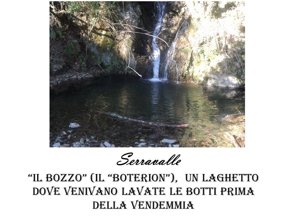 Serravalle Il bozzo (il boterion), un laghetto dove venivano lavate le botti PRIMA DELLA VENDEMMIA