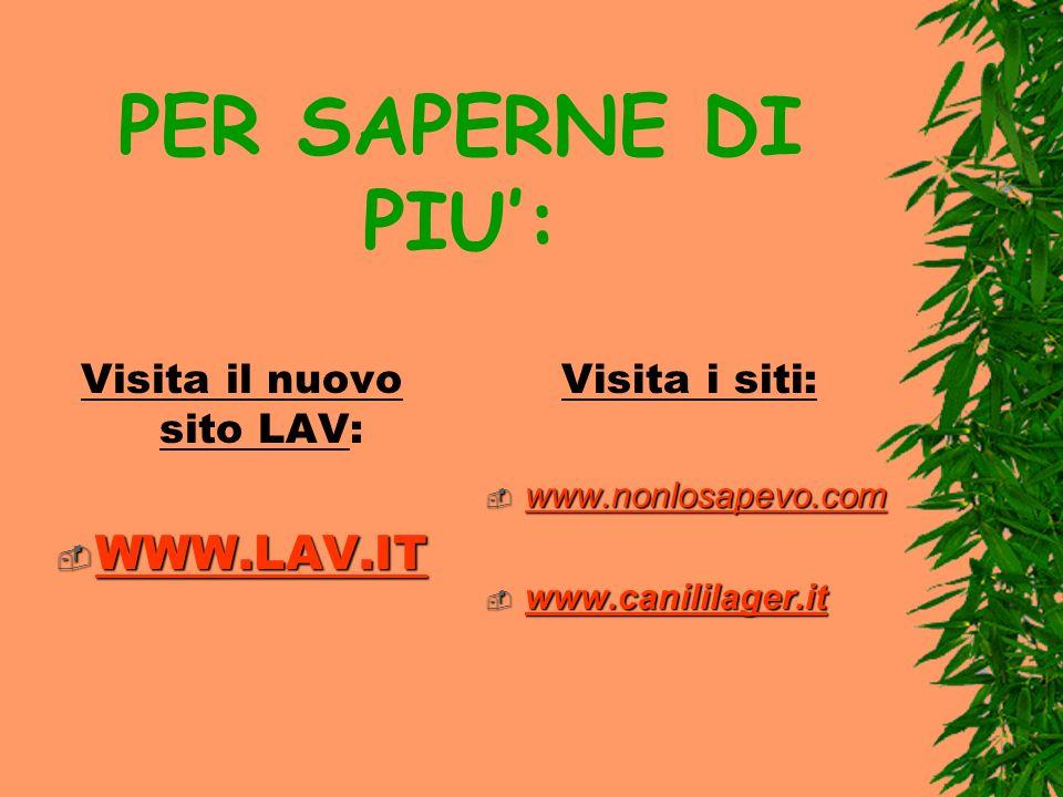 PER SAPERNE DI PIU: Visita il nuovo sito LAV: WWW.LAV.IT WWW.LAV.IT WWW.LAV.IT Visita i siti: www.nonlosapevo.com www.nonlosapevo.com www.canililager.it www.canililager.it www.canililager.it