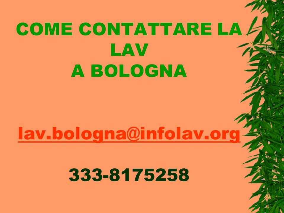 COME CONTATTARE LA LAV A BOLOGNA lav.bologna@infolav.org 333-8175258 lav.bologna@infolav.org