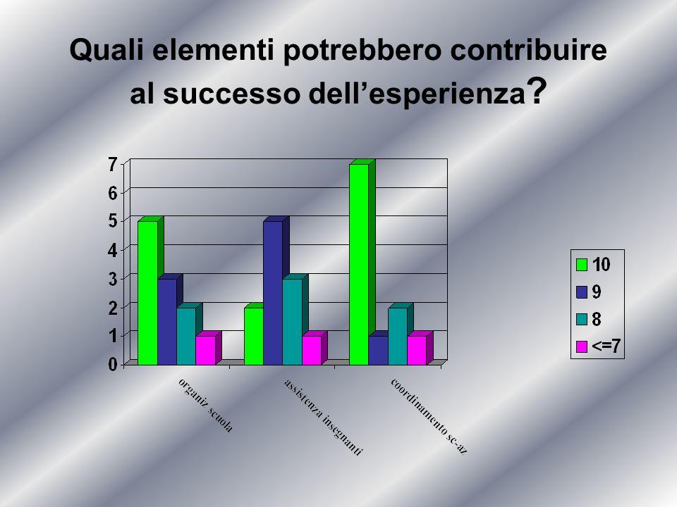 Quali elementi potrebbero contribuire al successo dellesperienza