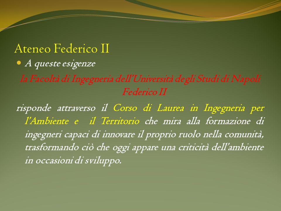 Ateneo Federico II A queste esigenze la Facoltà di Ingegneria dellUniversità degli Studi di Napoli Federico II risponde attraverso il Corso di Laurea