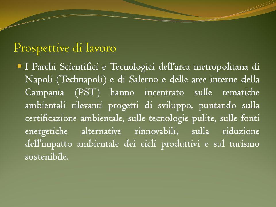 Prospettive di lavoro I Parchi Scientifici e Tecnologici dellarea metropolitana di Napoli (Technapoli) e di Salerno e delle aree interne della Campani