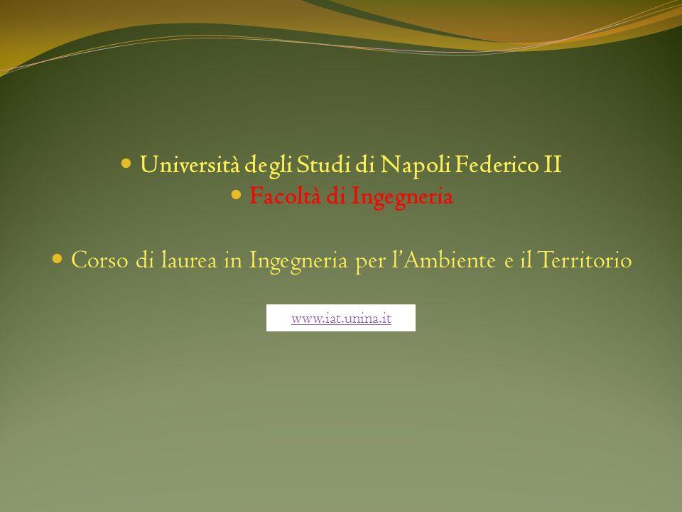 Università degli Studi di Napoli Federico II Facoltà di Ingegneria Corso di laurea in Ingegneria per lAmbiente e il Territorio www.iat.unina.it