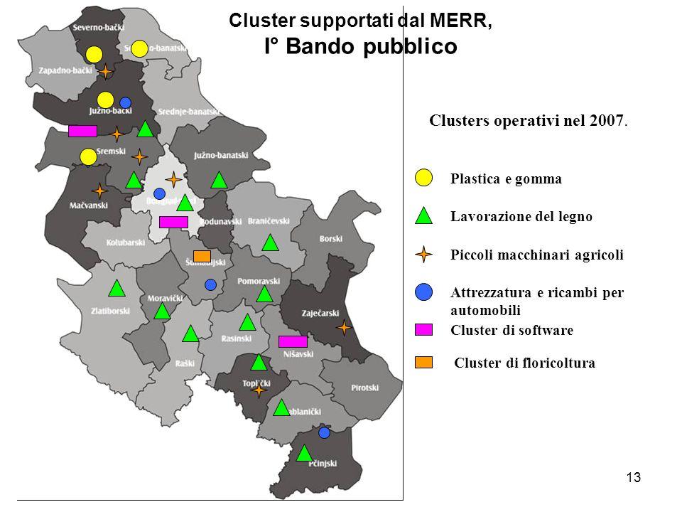 13 Cluster supportati dal MERR, I° Bando pubblico Clusters operativi nel 2007.