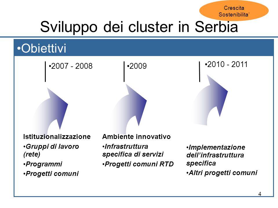 4 Sviluppo dei cluster in Serbia Obiettivi 2007 - 2008 2010 - 2011 2009 Istituzionalizzazione Gruppi di lavoro (rete) Programmi Progetti comuni Ambiente innovativo Infrastruttura specifica di servizi Progetti comuni RTD Implementazione dellinfrastruttura specifica Altri progetti comuni Crescita Sostenibilita